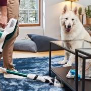 Haustiere Staubsaugen Hund