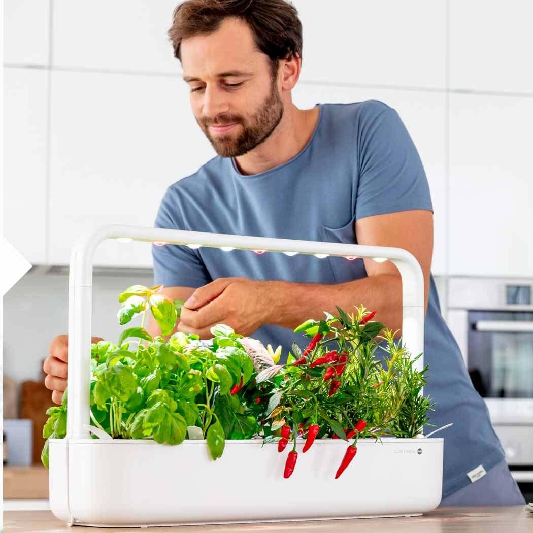 Food Trends 2020 Garten