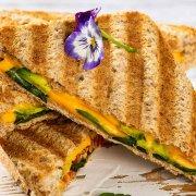Kontaktgrill Rezepte Sandwich Panini Header