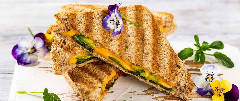 Kontaktgrill Sandwich Panini Header