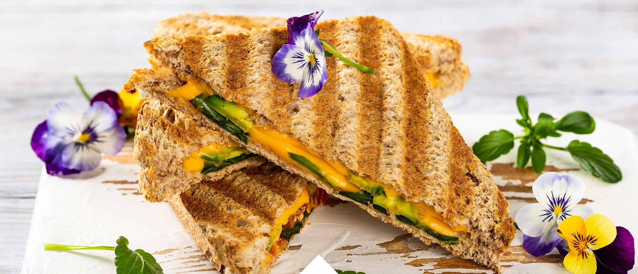 Kontaktgrill Sandwich