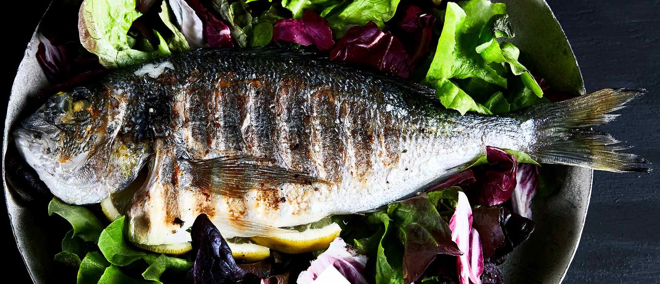 Fisch Grillen Kontaktgrill