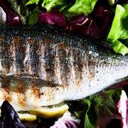 Fisch Grillen Kontaktgrill Header