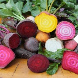 Saisonal Rote Bete Gemüse
